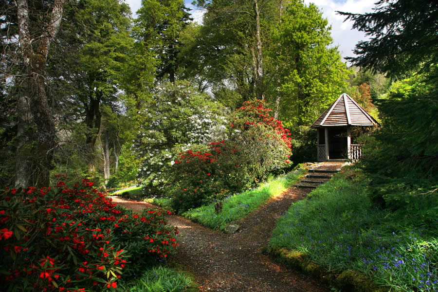 Ardkinglas Woodland Gardens and Gruffalo Trail - Cairndow - image 0