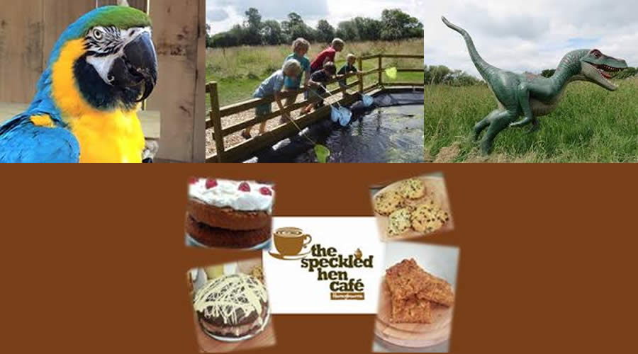 All Things Wild Nature Centre - Evesham - image 2