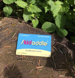 Skidaddle Card