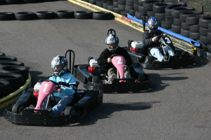 Brooklands Go Karts  Worthing